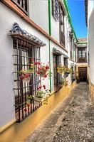 Ronda. Andalusia. Spain
