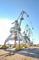 Port cranes.