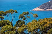 Wilsons Promontory in Victoria, on the southern tip of mainland Australia.