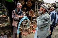 Man in traditional Afghan clothes buys pheasant on the birds market in Kabul, Afghanistan.