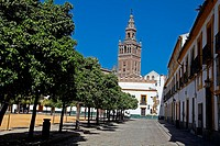 Typical of Santa Cruz with Girald background in Seville, Spain.