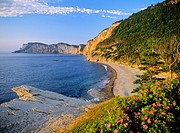 North America, Canada, Quebec, Gaspe Peninsula, Forillon National Park, Appalachian Mountains.