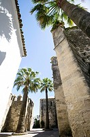 Narrow lanes adjacent to the castle walls of the picturesque village of Vejer de la Frontera, voted by the Spanish as the most beautiful village in Sp...