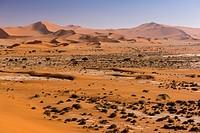 Red sand dunes in the Sossusvlei valley. Namib Naukluft National Park. Namib Desert, Namibia.