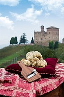 Still Life the White Truffles from Piedmont and size truffles, with views over the vineyards and the castle of Grinzane Cavour.