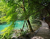 Plitvice Lakes National Park, Lika-Senj County & Karlovac County, Croatia. Visitors strolling on the wooden walkways which criss-cross the park.