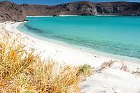 Balandra beach. La Paz, Baja California Sur. Mexico