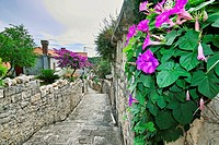 Typical back street in the town of Cavtat, near Dubrovnik, Croatia