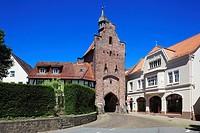 Germany, Blomberg, Lipper Bergland, Lippisches Bergland, Weserbergland, Teutoburg Forest / Egge Hills Nature Park, East Westphalia, Westphalia, North ...