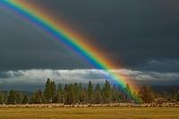 Rainbow over the Hat Creek Valley, Shasta County, California.