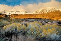 Snowstorm in mountains above the Buttermilk Region, Eastern Sierra, California.