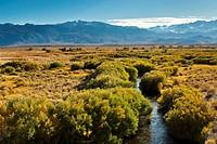 Owens River in the Owens Valley, near Bishop, Eastern Sierra, California.