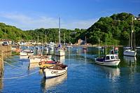 Lower Fishguard Pembrokeshire Wales.