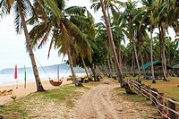 Tropical beach with coconut trees and hammocks.