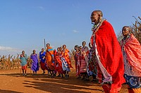 Maasai (Masai) people dancing. Satao Elerai Conservancy. Near Amboseli National Park. Kenya.