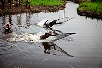 Traditional fishing in Douraghio. Ivory Coast. Africa.