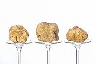 Still life of a truffles placed on the pedestal in glass on the white background.