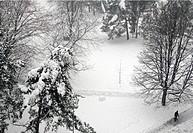 Europe, Switzerland, Geneva, street scene in winter seen from above