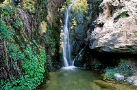 Sitting Bull Falls, Lincoln National Forest, New Mexico.