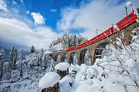 Bernina Express passes through the snowy woods around Filisur Canton of Grisons Switzerland Europe.