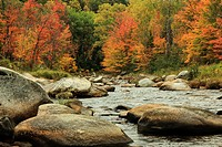 Fall colors at the Israel River, Route 142, New Hampshire.