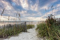 Sea oat lined dune pathway leading to the Amelia River on the South End of Amelia Island, Florida.