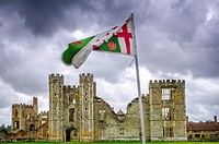 The ruins of the 16th century Cowdray House. Largely destroyed by fire in 1793. Midhurst, West Sussex, England.