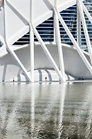 Museum of Sciences Prince Philip, made by Santiago Calatrava, and its reflection. Valencia, Spain.