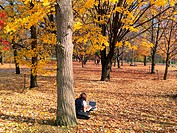 Alone in the fall forest. A young woman works with her laptop outdoors amid lovely autumn colours.