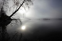 The rising sun is shining through mist rising from a lake in autumn. Västernorrland, Sweden.