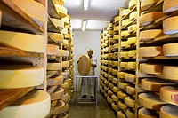 Cheese left to mature, Alm Stoankasern, Tux, Austria