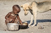 Himba child sitting on the ground of his remote village eating from a rusty pot while a dog is looking close to him.
