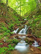 Marianegre stream. Spring time at Montseny Natural Park. Barcelona province, Catalonia, Spain.