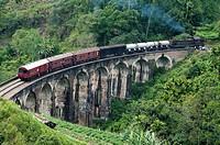 Train crossing Demodera Nine Arches Bridge near Ella in the Southern Highlands, Sri Lanka.