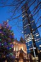 Christmas Tree, Copley Square, Boston, MA Trinity Church with Hancock Tower, USA