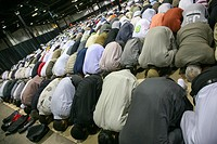 Muslim men worship together in a prayer hall.