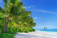 Tropical paradise, La Digue Island, Seychelles, Indian Ocean, Africa.