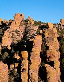 USA, Arizona, Chiricahua National Monument, Evening light on spires and pinnacles in Echo Canyon which were formed by erosion of rhyolite tuff, a dark...