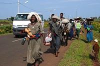 Ethiopia, Amhara Region, Bahir Dar, market scene