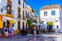 Lively street in the historic center. Córdoba, Andalusia, Spain, Europe.