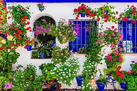 Courtyards Festival of Cordoba 2016 - La Fiesta de los Patios de Córdoba. In the list of Intangible Heritage of Humanity of Unesco since December 2012...