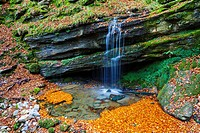 River source and beech leaves in autumn. La Sia mountain pass. Collados del Ason Natural Park. Cantabria, Spain.