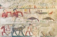 Egypt, Cairo, Egyptian Museum, the tomb of Nefermaat, Meidum, was the only one to use the technics of sunk relief filled with paste inlays. Fowling bi...
