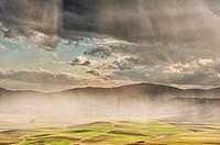 Cereal fields near Atienza (Guadalajara Province, Castilla-La Mancha Region, Spain).