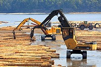 Equipment sorting logs at sawmill, Ladysmith, Vancouver Island, British Columbia.