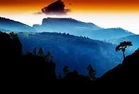 Horizontal vdramatic mountain trees on rocks silhouette sunset background backdrop.