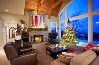 Christmas tree in living room with fireplace, North America, Canada, Ontario.