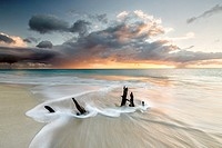 The waves and caribbean sunset frames tree trunks on Ffryers Beach Antigua and Barbuda Leeward Islands West Indies.