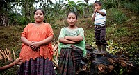 Chahal, Alta Verapaz, Guatemala, young maya tribe girls and a boy are watching me.