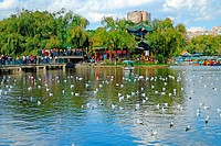 View of Cuihu Lake in Kunming, Yunnan, China